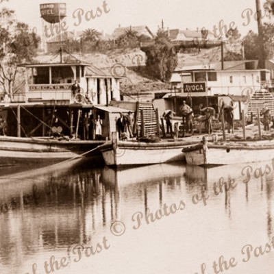 PS OSCAR W, PS AVOCA & barge at Mildura, VIC, Victoria 1920s
