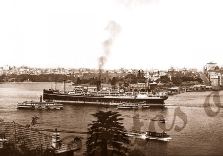 SS BENDIGO in Sydney Harbour, New South Wales, steam ship 1920s