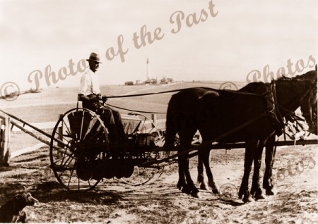 Farmer on drill, Aireys Inlet, Vic. c1910s Victoria. Great Ocean Road. Horse. Lighthouse