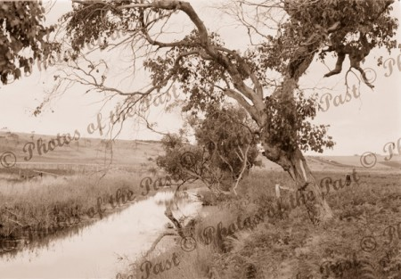 Painkalac Creek, Aireys Inlet, Vic. c 1900s. Victoria. Great Ocean Road