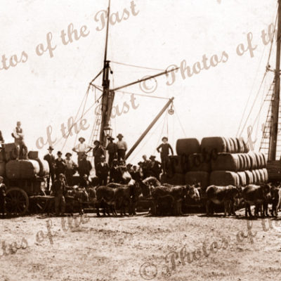 Donkey team with bales of wool unloading to ship. SAR truck. c1910