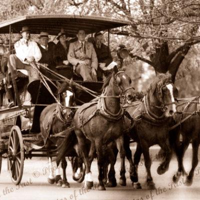 5 horse carriage (Drag) at Oakbank, SA. Easter Monday. c1920. South Australia. Horse racing