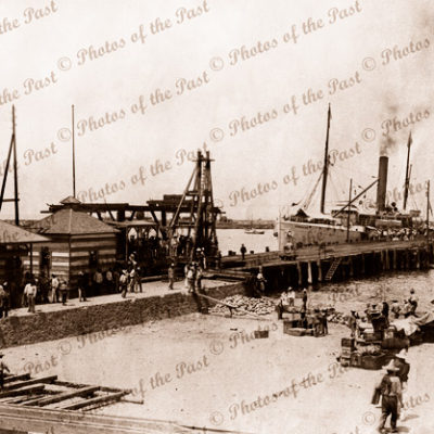 SS CURACAO in West Indian port. Shipping