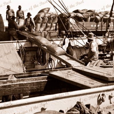 Barque HERZOGIN CECILIE loading wheat, Port Lincoln, SA. South Australia. 1928. Ship