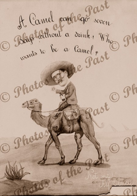 """Cartoon. """"Who wants to be a camel"""" by Alf Olney"""