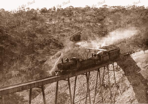 Train going over Sleep's Hill Viaduct, Eden Hills SA, South Australia 1919
