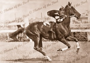 Phar Lap winning the Melbourne Cup, Vic.Victoria 1930, horse