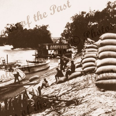 Loading wheat into barges at Loxton SA South Australia c1910
