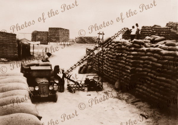 Wheat stacks at Pine Pt. SA, South Australia, 1930s