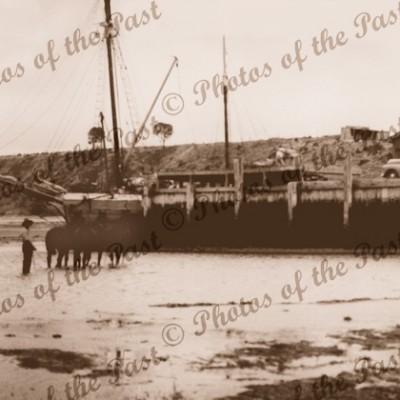 Pine Point, SA. ANNIE WATT at wharf, South Australia c1950s, shipping
