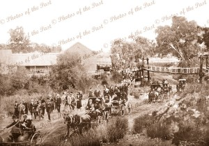 Entrance to Oakbank Race Course, SA. South Australia. April 1912 horses and carriages