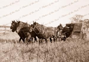 4 horse team & Sunshine Harvester 1920s