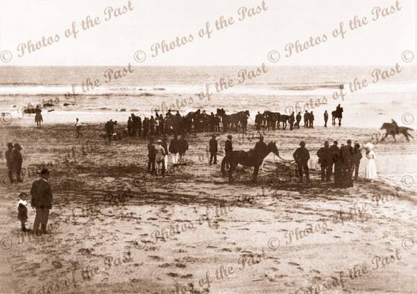 Horse racing on beach at Aireys Inlet, Vic. Winning Airey's Cup. Victoria. 1912