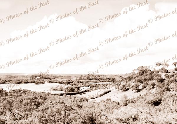 Panorama of Rye, Vic. c1920s. Victoria