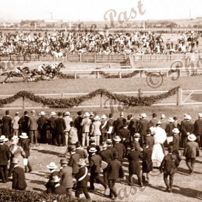 On the home stretch. 'Lord Noonan' winning the Melbourne Cup. Flemington