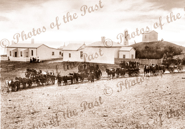 Cape Jervis, SA. - Lighthouse cottages. c1890s. South Australia. Horse and carriage
