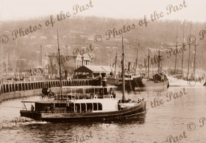 Shipping in Launceston, Tasmania. Ferry 'CENTENNIAL', 1901