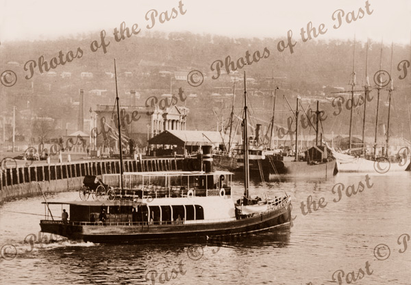 Shipping in Launceston, Tasmania. Ferry 'CENTENNIAL', 1901
