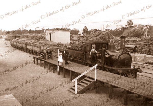Lameroo railway station, SA 1909. South Australia. train