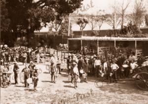 Australian Expeditionary Forces, Ballarat, Vic.c1915. Victoria. Military.