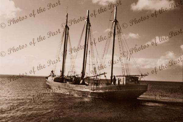 Schooner CORINGLE, c1950s, shipping