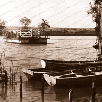 Mannum ferry, SA. Murray River. South Australia. c1917