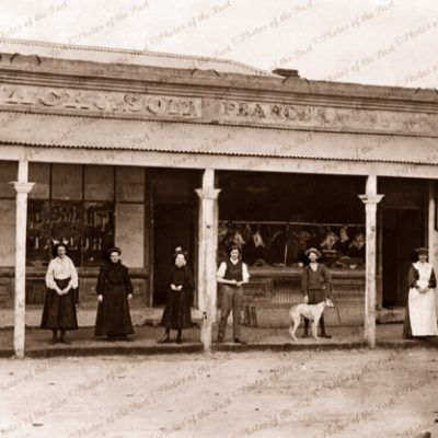 Butcher & Taylor shop at Hawker, SA. c1900s. south australia. Dog