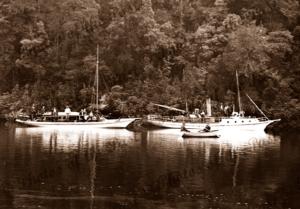 Gordon River, Tasmania. c1890 River boats