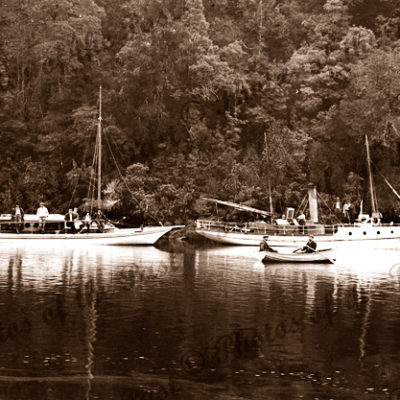 Gordon River, Tasmania. c1890 River boats