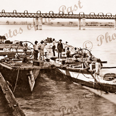 Barges at Murray Bridge, SA. South Australia. c1900