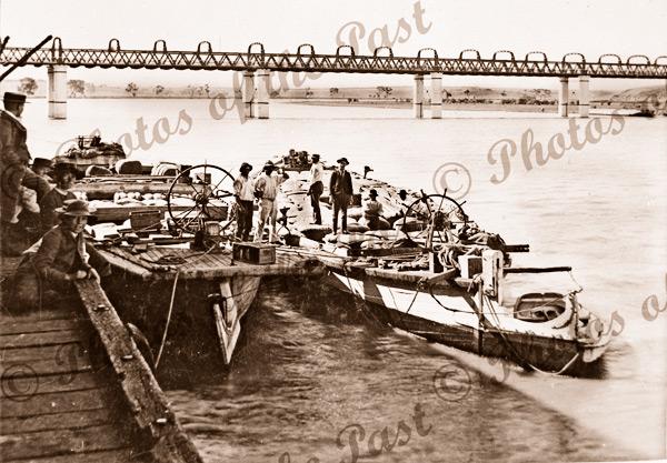 Barges at Murray Bridge, SA. South Australia. c1900