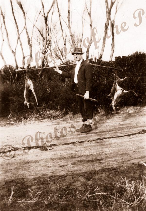Ross Trethewey with 3 snared wallabies, Penneshaw, Kangaroo Island, SA. South Australia. 1939.