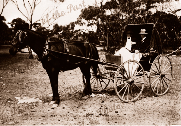Horse and buggy with two men. c1910
