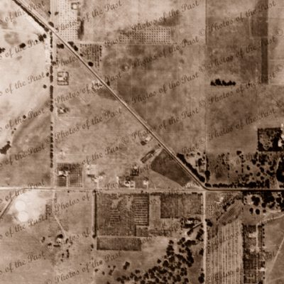 Aerial view of Tonsley, Clovelly Park/St. Marys, SA. South Australia. Adelaide. 1940
