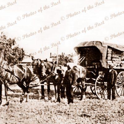 Mullah & Bugwan Singh & their hawker van near Kerang/Swan Hill, Victoria. Horses