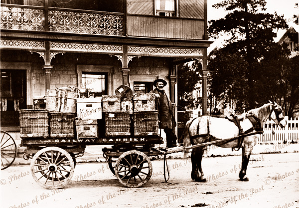 Railway Carrier dray laden with goods, Millicent, SA. South Australia. 1900s. Horse