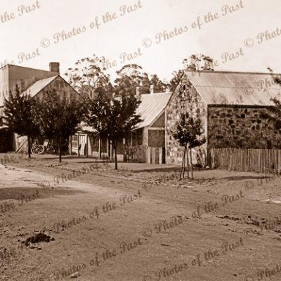 A street in Hahndorf, SA. c1890. South Australia