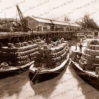 PS RODNEY & Wool barge at Echuca Vic. (Burnt August 1894). Victoria. Murray River. 1893. paddle steamer