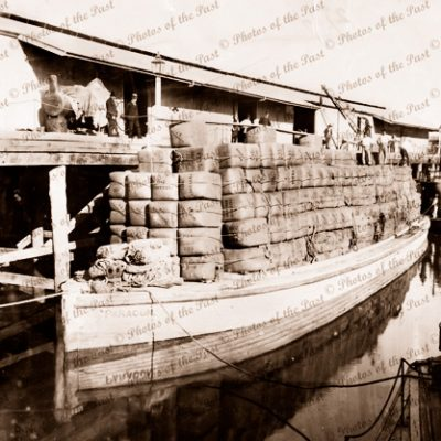 Loaded wool barge PARAGON & PS BANTAM at Echuca Vic. Victoria. 1893. paddle streamer. Murray River