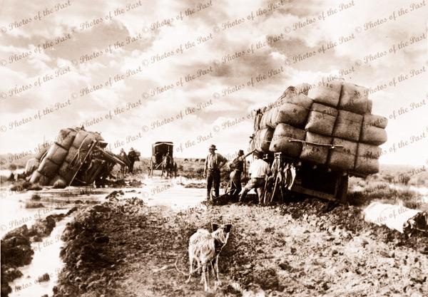 Bogged wool wagons, near Jerilderie, NSW. On the Black Soil Plains, c1870. dog