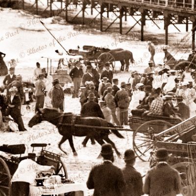 Commemoration Day at Glenelg, SA. 1890s. South Australia. beach. jetty