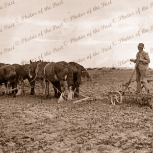 Ploughing with horse team. c1910