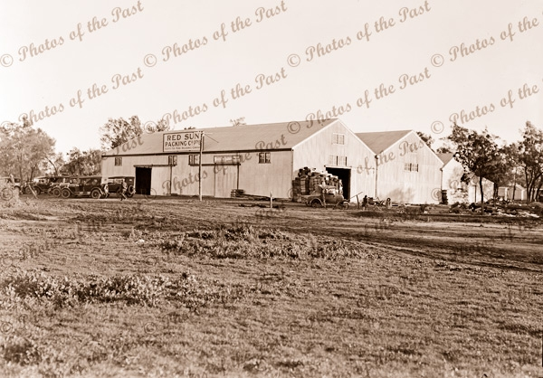 Red Sun fruit packing shed at Red Cliffs, Vic. 1920s. Victoria