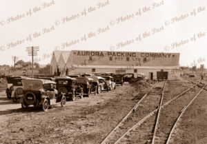 Aurora fruit packing sheds at Red Cliffs, Vic. 1920s. Murray. Victoria