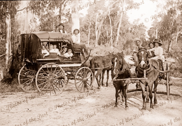 Drays at Badger Creek, Victoria. Horses. c1910