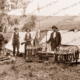Rabbit shooters' camp with dead rabbits and animals in cages. C1920s