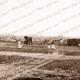 Victorian goldfields, c1860s