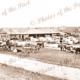 Adamson Bros. Implement Factory (1874 - 1883), Laura, South Australia. 1877