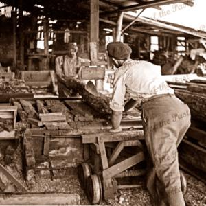 Sawing logs at Garrett's sawmill Second Valley, South Australia. 1954