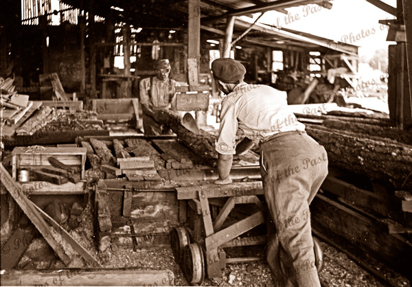 Sawing logs at Garrett's sawmill Second Valley, South Australia. 1954